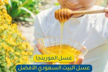 يُعتبر عسل المورينجا أندر أنواع العسل في الكويت وأكثرهم فائدة!!